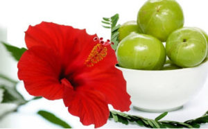 Indian Gooseberry Oil With Hibiscus