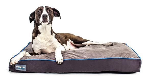 better world dog beds