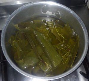 boil aloevera