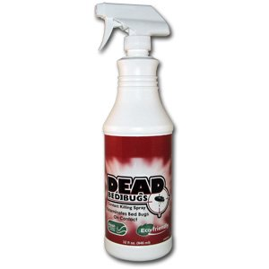 dead bed bugs contact killing spray
