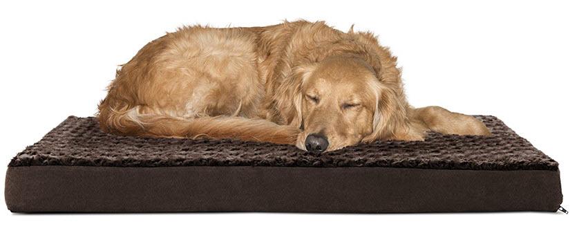 furhaven dog beds
