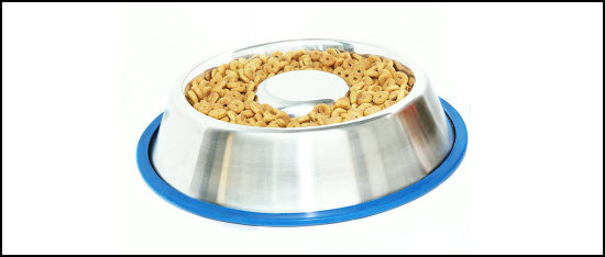 mr.peanut slow feed dog bowl