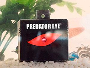 Aspectek Predator Eye Nighttime Animal Repeller